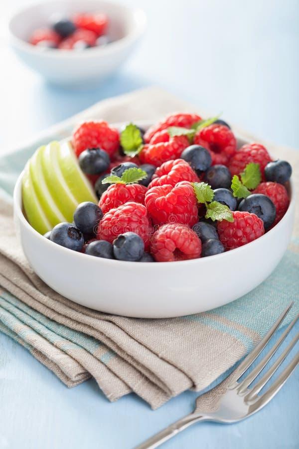Sallad för ny frukt med hallonblåbäräpplet royaltyfria bilder