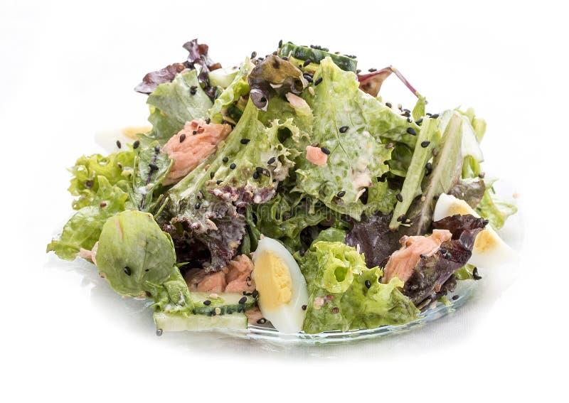 Sallad med laxen och grönsaker med ostronsås asiatisk lunch arkivbilder