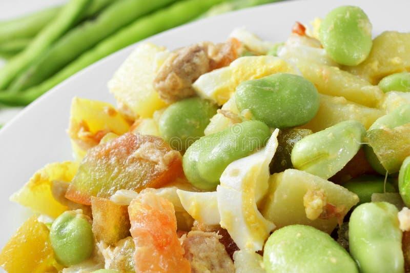 Sallad med rå bondbönor, tomat, tonfisk, kokt potatis som kokas royaltyfri foto