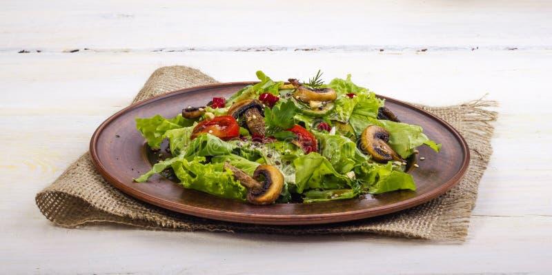 Salladgrönsak royaltyfri bild