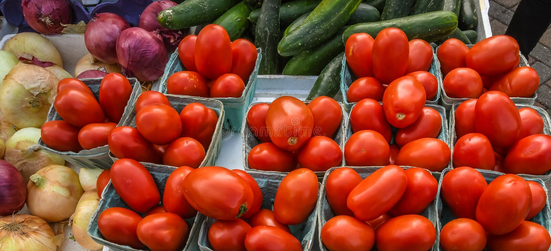 Salladgrönsaker som är till salu på bondens marknad royaltyfri bild