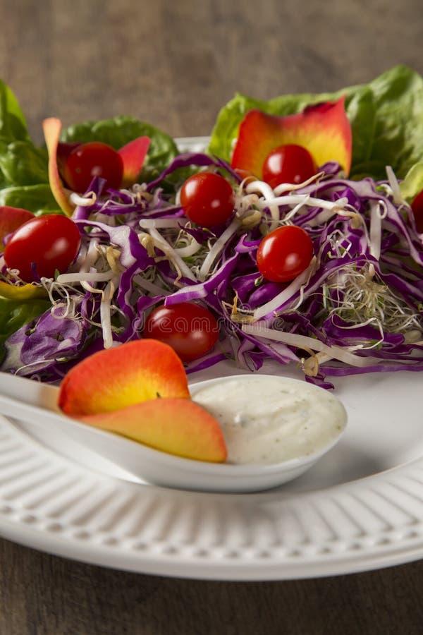 Salladmaträtt med druvatomater, grönsallat och röd kål och sauc royaltyfria foton