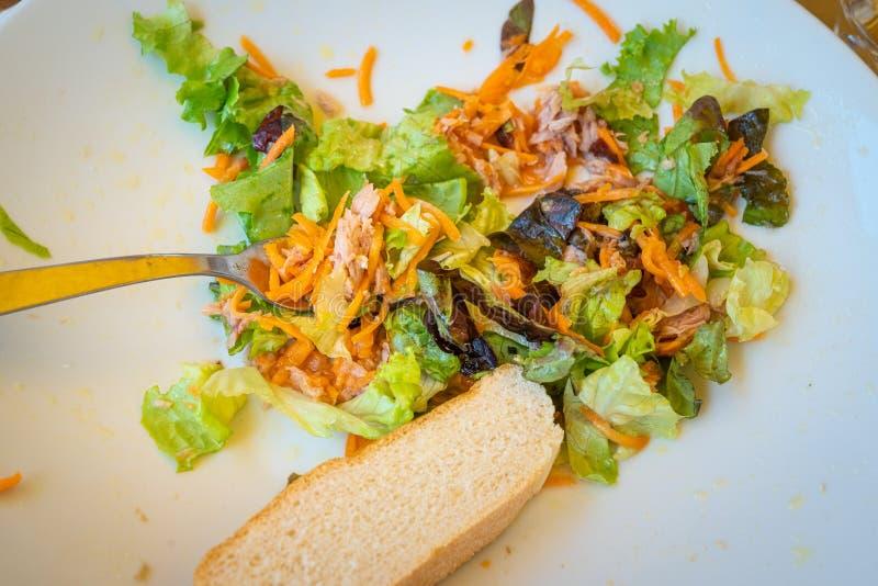 Salladplatta med tonfisk och bröd royaltyfria foton