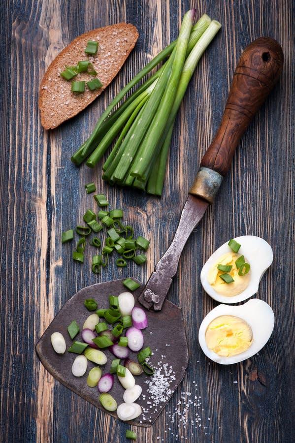 Salladslökar, bröd och kokt ägg royaltyfri foto
