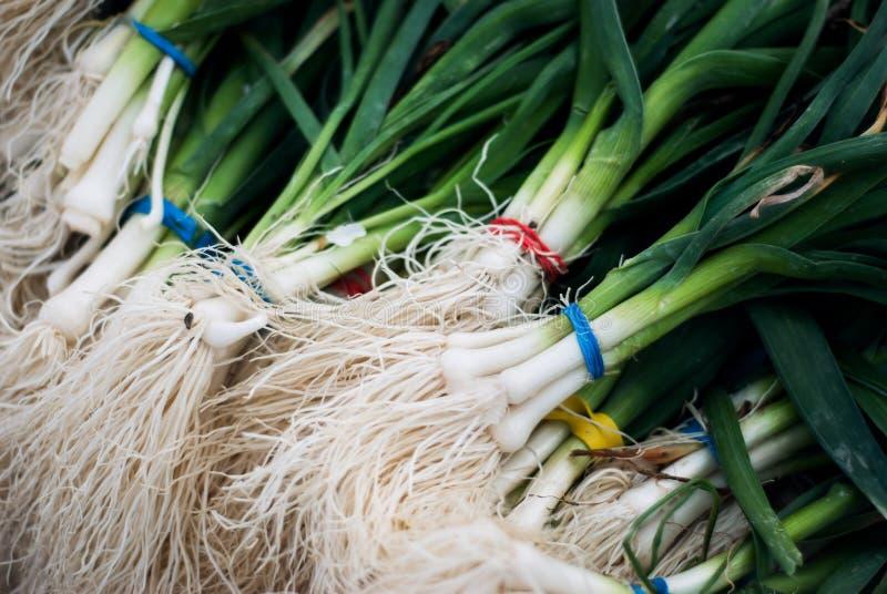 Salladslökar på marknaden för bonde` s arkivfoto