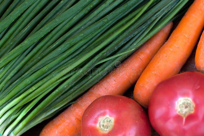Salladslökar tvättade morötter, röda tomater arkivfoto