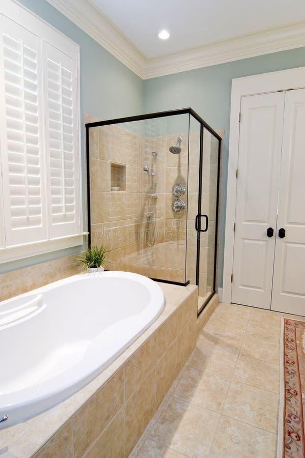 Salle de bains avec la douche et le baquet en verre photographie stock