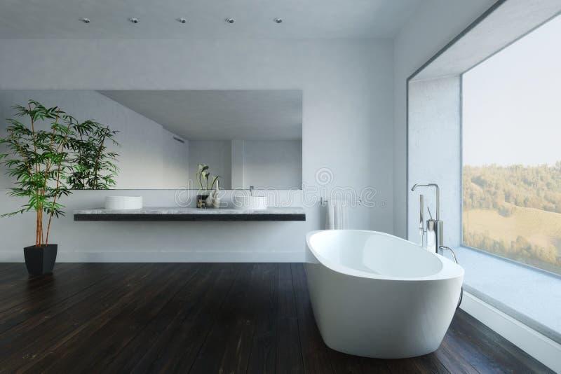 Salle de bains contemporaine avec l'usine et la baignoire illustration stock
