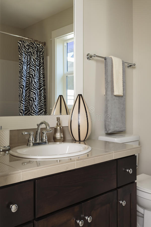 Salle de bains contemporaine avec le toliet photographie stock