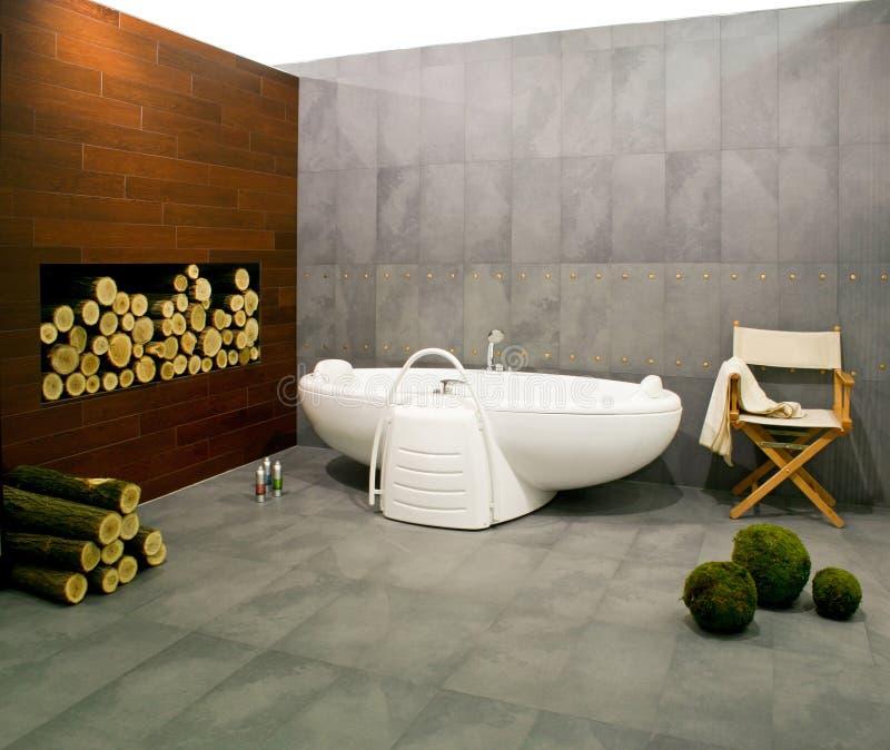 Salle de bains de l'hiver photographie stock libre de droits