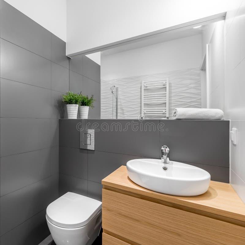 Salle De Bains Grise Moderne Avec La Toilette Blanche Image ...