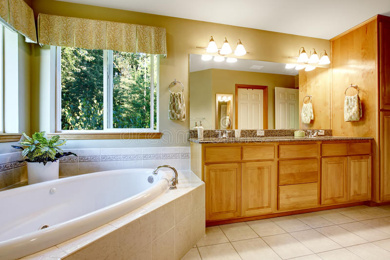 salle de bains lumineuse avec la baignoire faisante le coin photo stock image du bain. Black Bedroom Furniture Sets. Home Design Ideas
