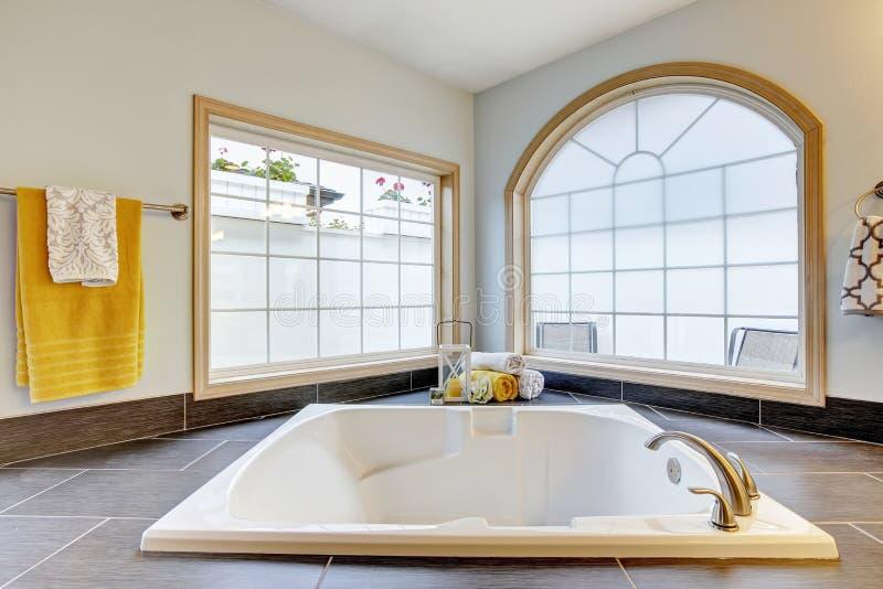 Download Salle De Bains Principale Avec Le Luxe Avec La Baignoire Et Les Grandes Fenêtres Photo stock - Image du neuf, patrimoine: 76081116