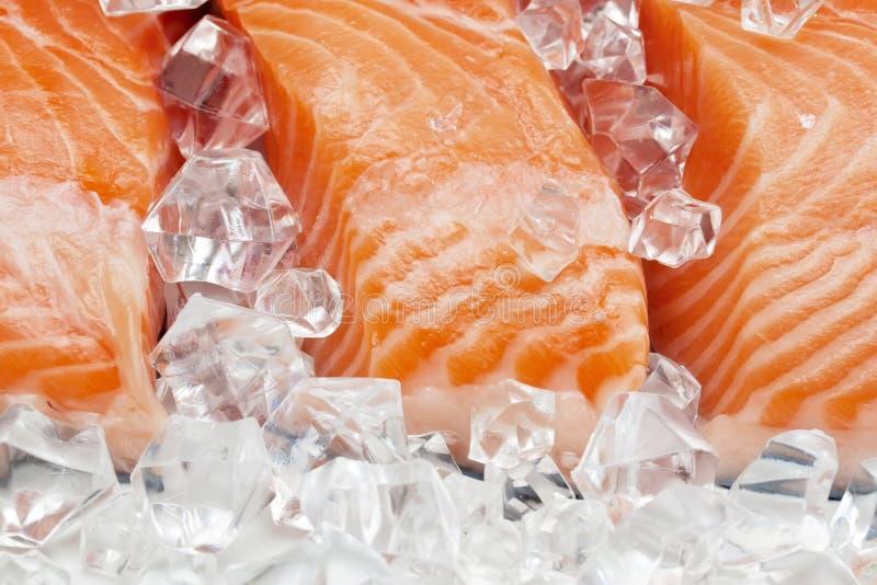 Salmões no gelo foto de stock