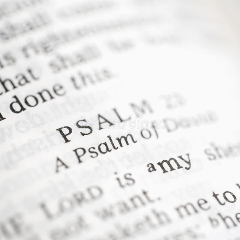 Salmo 23. imagens de stock royalty free
