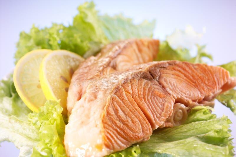 Salmon выкружка с лимоном стоковая фотография