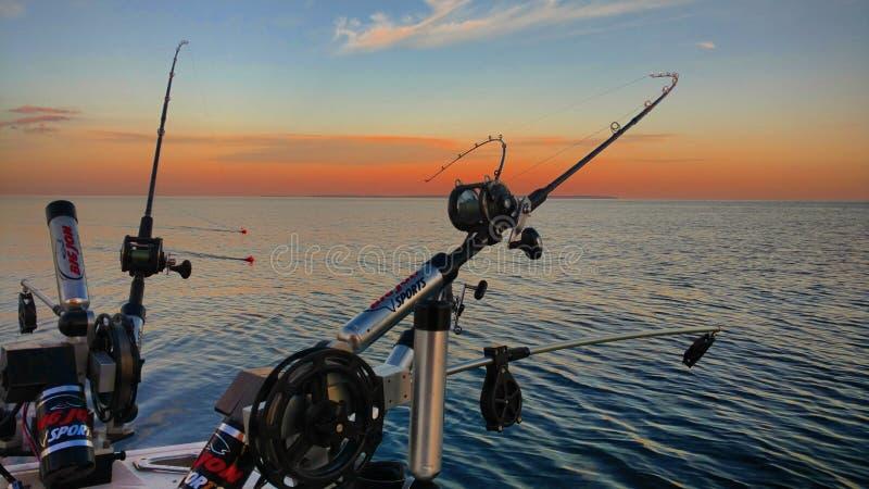 Salmon рыболовные удочки и вьюрки стоковое изображение