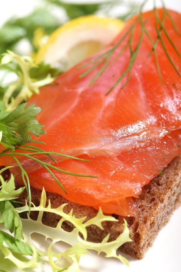 salmon сандвич стоковое фото