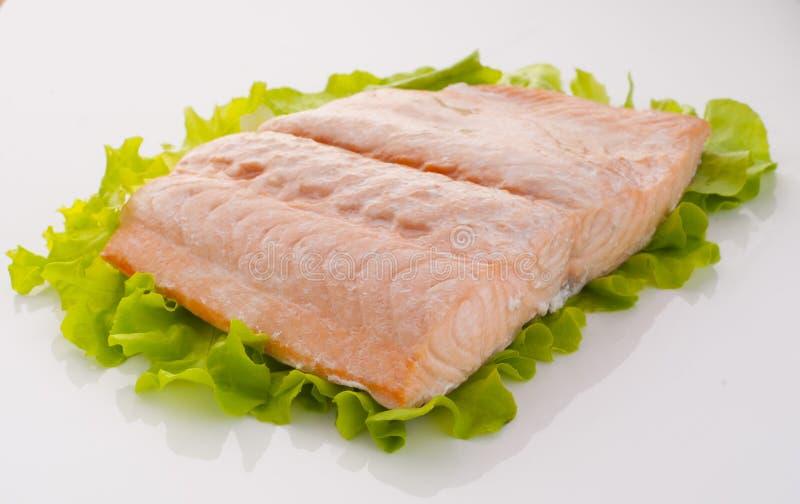Salmon часть стоковое изображение