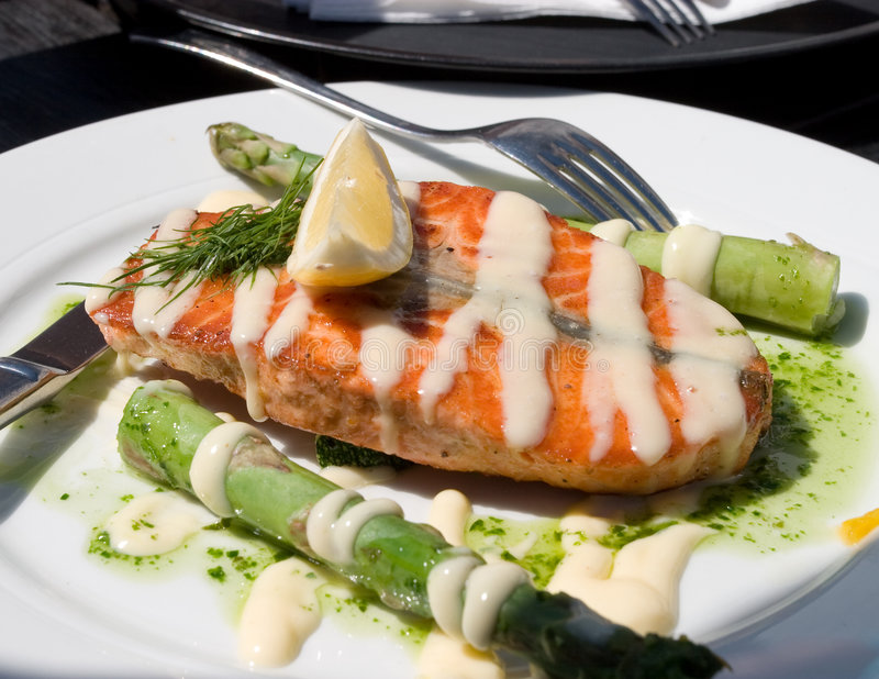 Download Salmon stock photo. Image of main, food, dish, sauce, grilled - 7995950