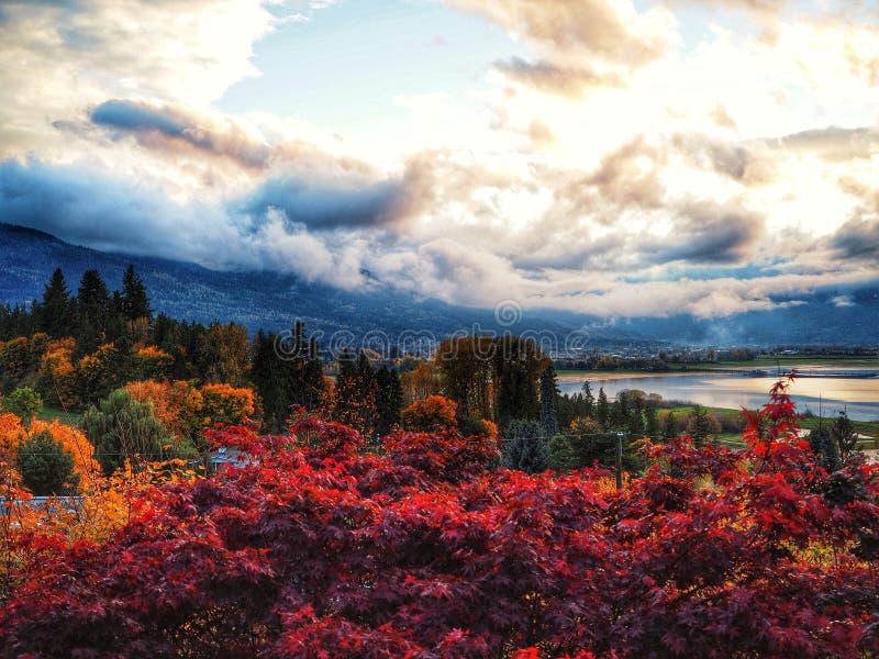 Salmon Arm in Autumn. City of Salmon Arm In autumn royalty free stock photo