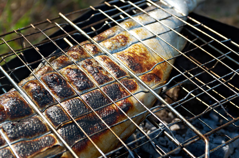 Salmon cooking on a grill stock photo
