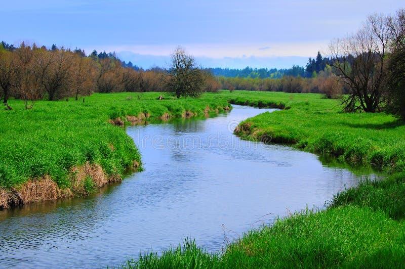 Salmon Creek Marshland stock images