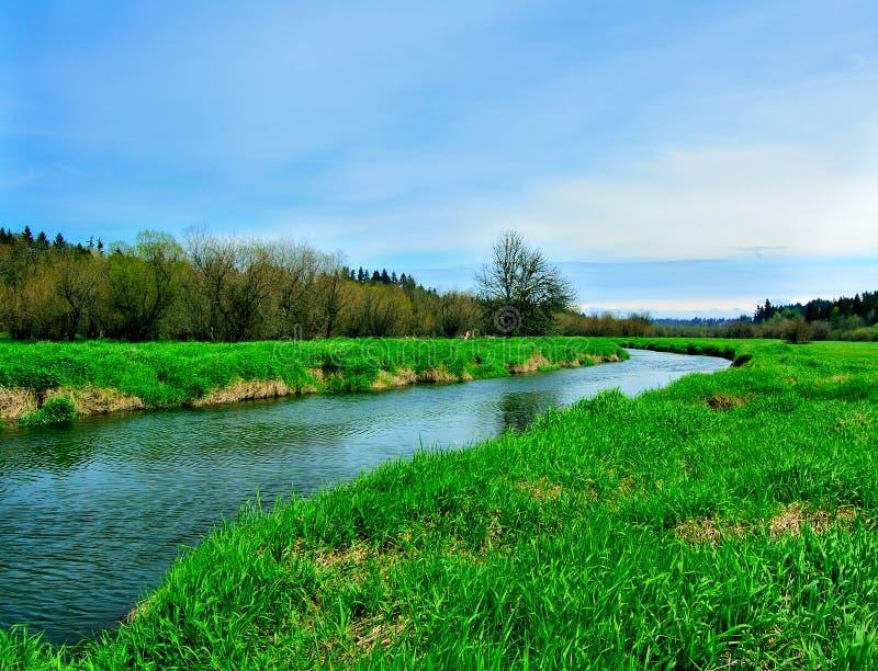 Salmon Creek Marshland stock photography