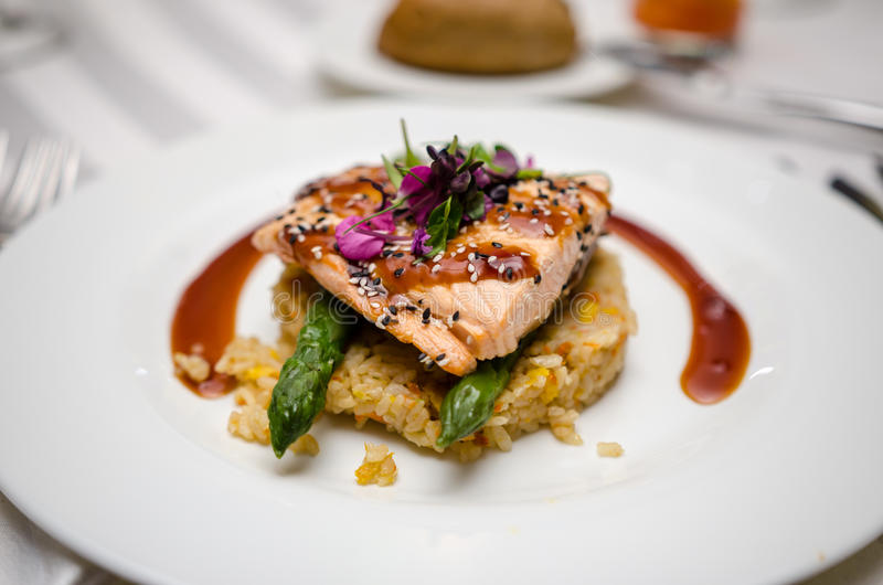 Salmon dish royalty free stock photos