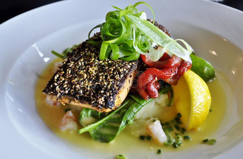 Salmon with Dukkah crust. Dish of salmon with Dukkah crust on mashed potatoes, spinach and red capsicum royalty free stock photography