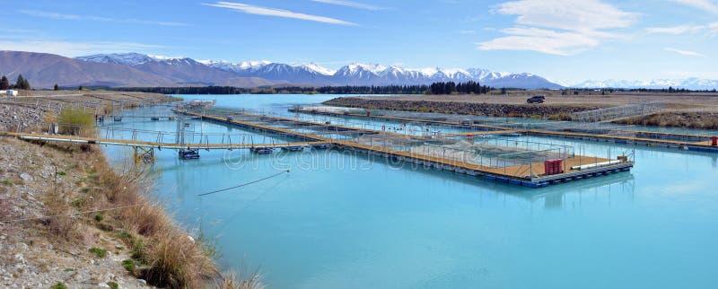 Salmon Farm Panorama sul lago Ruataniwha, Nuova Zelanda immagine stock
