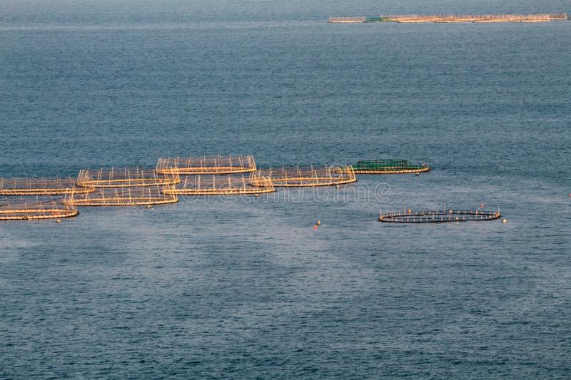 Salmon Farms in the Sea, Ireland royalty free stock images