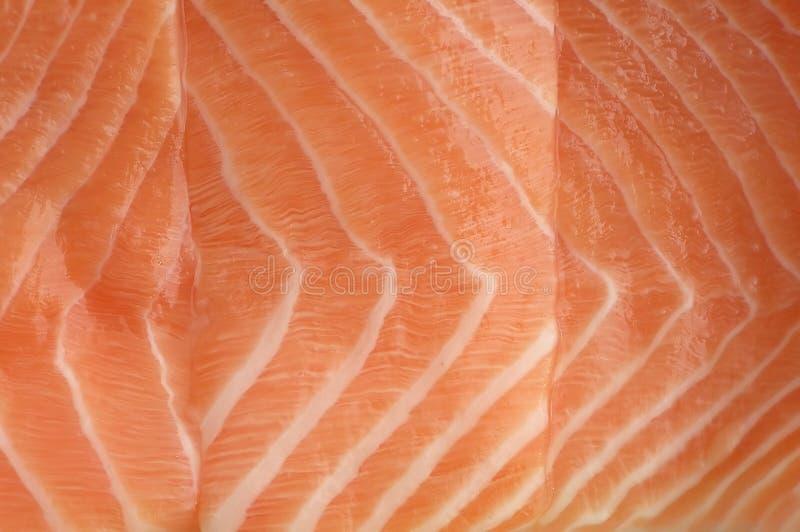 Download Salmon filet stock image. Image of fish, detail, water - 173663