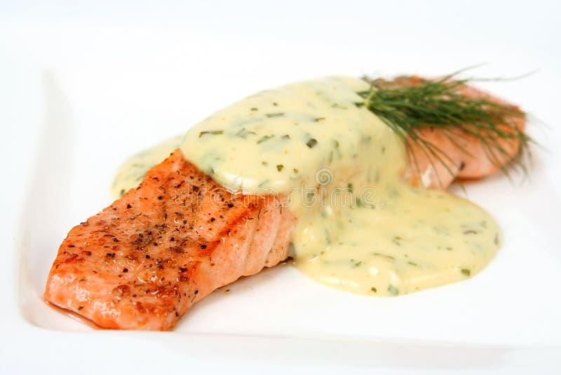 Salmon filet royalty free stock image
