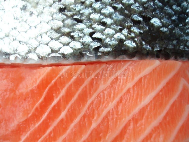 Salmon filet royalty free stock images