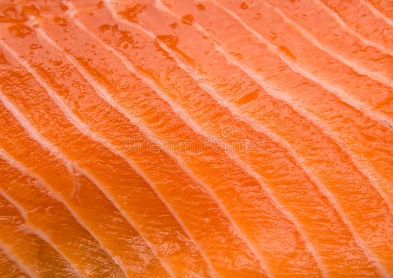 Salmon fillet royalty free stock photos