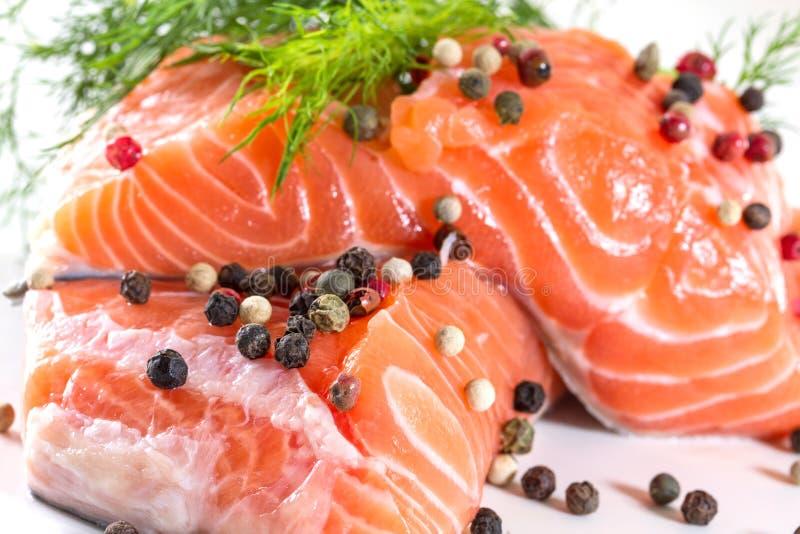 Salmon Fillet royaltyfri fotografi