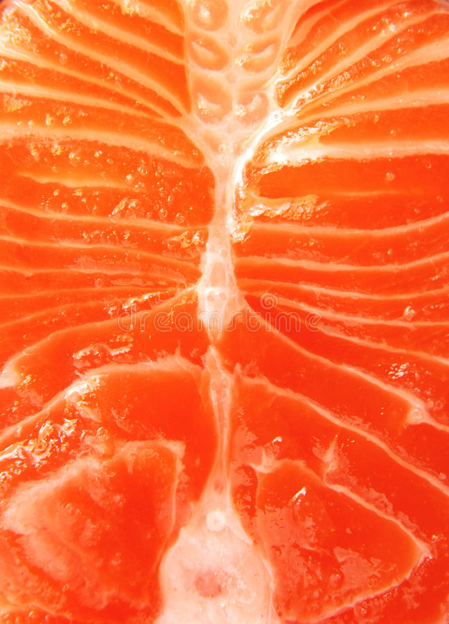 Salmon Fillet. A close up view of a fillet of salmon steak royalty free stock images