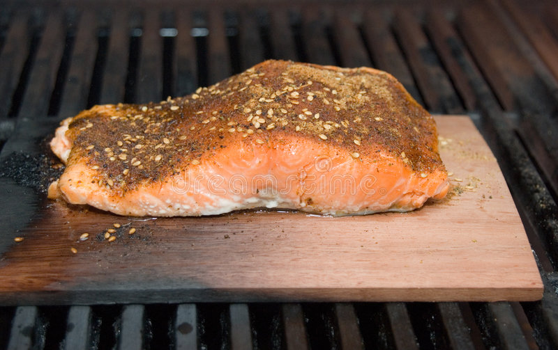 Salmon Fillet on Cedar Plank Smoke Cooking on BBQ. Salmon fillet being cooked on a cedar plank on BBQ grill. Salmon is spiced with seasoning stock photography