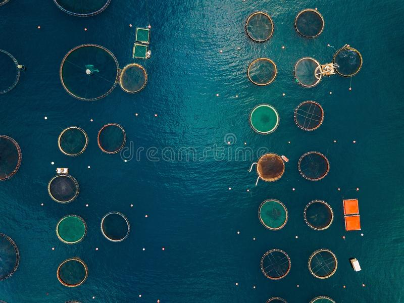Salmon fish farm with floating cages. Aerial view. Salmon fish farm with floating cages in Greece. Aerial view stock images