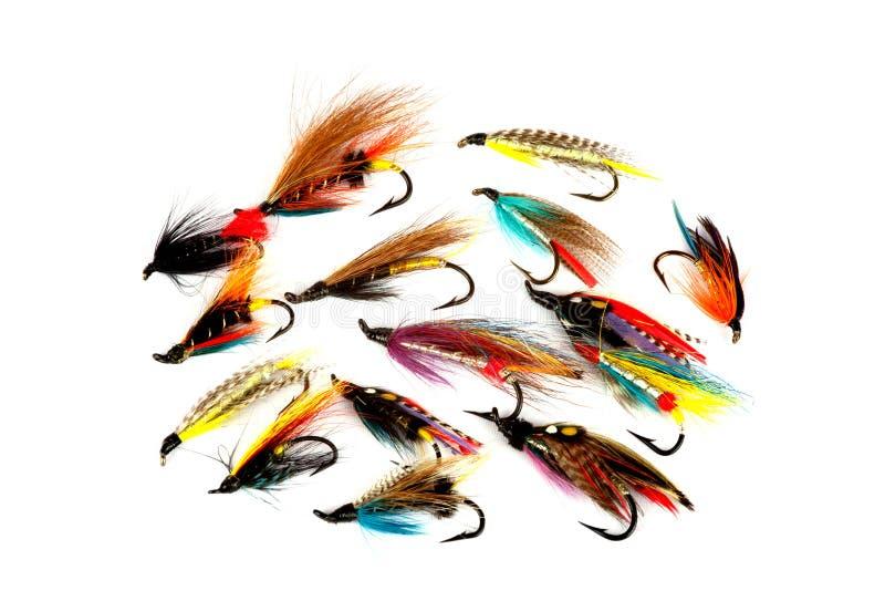 Salmon Fishing Flies Isolated op Wit royalty-vrije stock fotografie