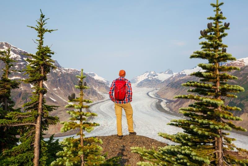 Salmon Glacier arkivfoto