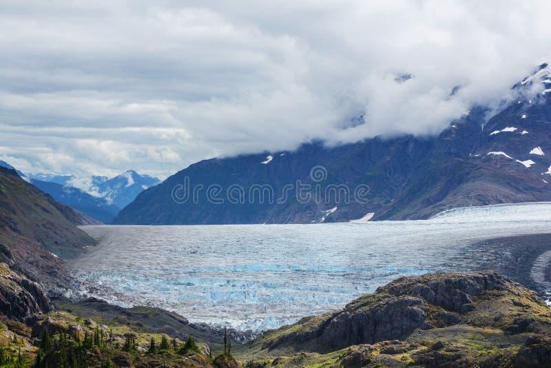 Salmon glacier. In Stewart, Canada royalty free stock image