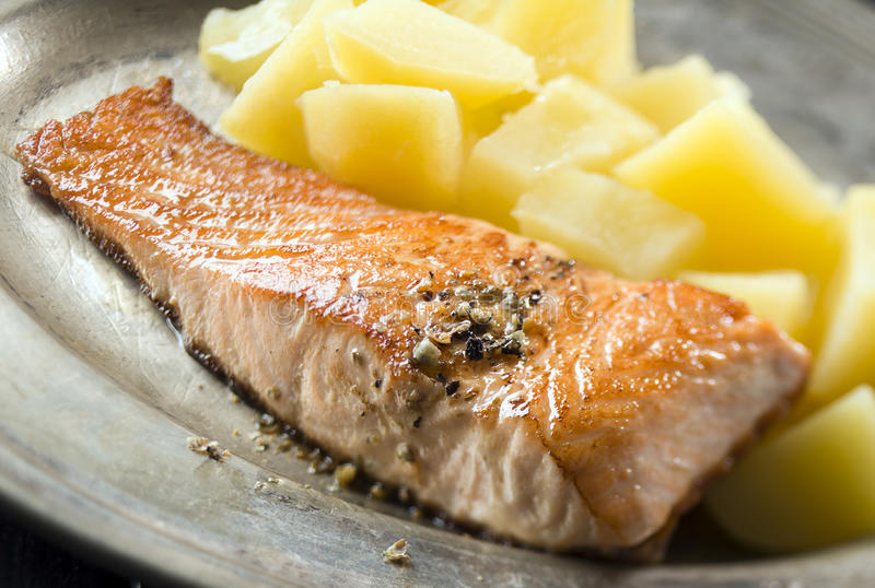 Download Salmon stock image. Image of lunch, yummy, seafood, salmon - 30628471