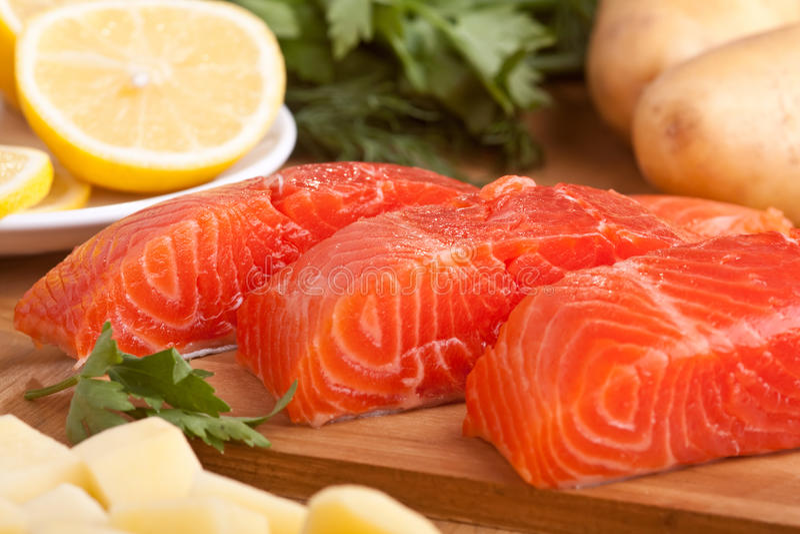 Salmon Pieces fresco fotografie stock libere da diritti