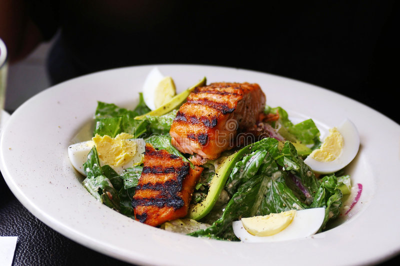Download Salmon Plate Stock Images - Image: 5205384