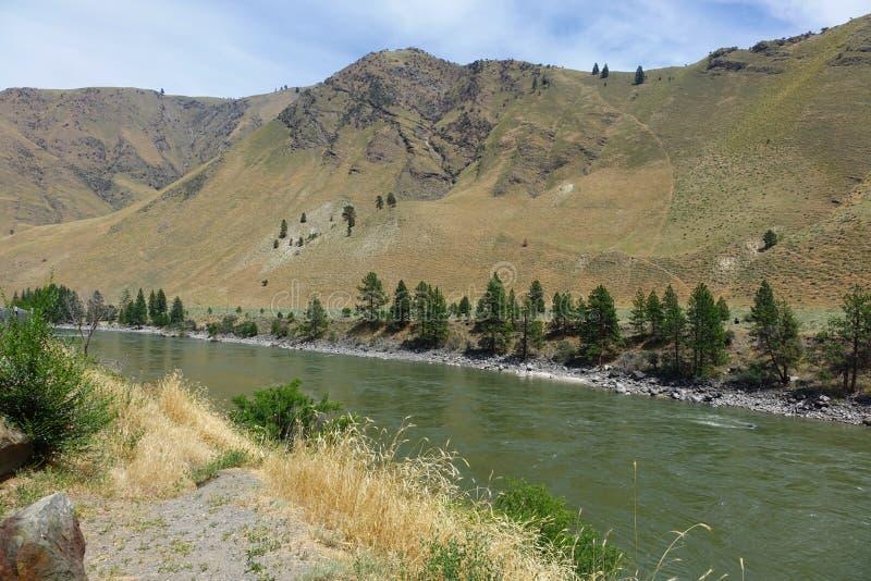 Salmon River en Riggins, Idaho foto de archivo