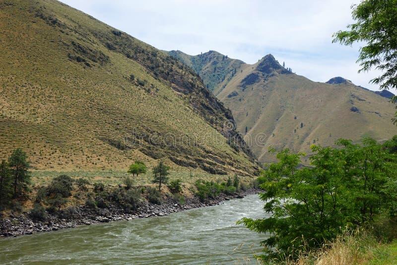 Salmon River en Riggins, Idaho fotos de archivo
