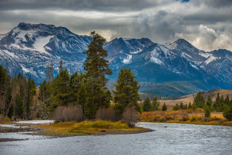 Salmon River Lower Stanley Idaho fotos de stock royalty free