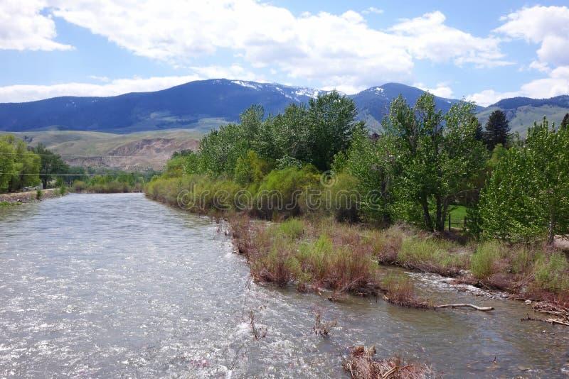 Salmon River - salmón, Idaho fotos de archivo libres de regalías
